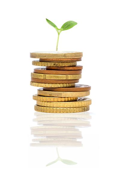 Pflanze auf einem Stapel Münzen